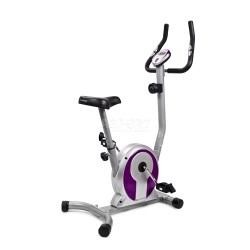 Rower magnetyczny SMART FIOLET Sapphire