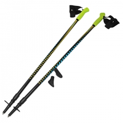 Kije, kijki Nordic Walking 2-sekcyjne, anti-shock 100-135cm SportVida